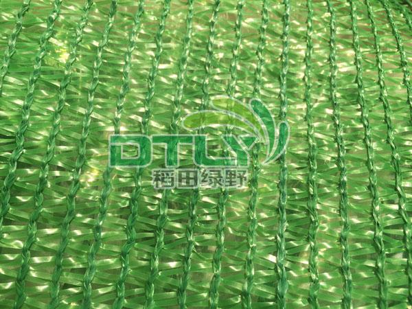 云南绿色三针网
